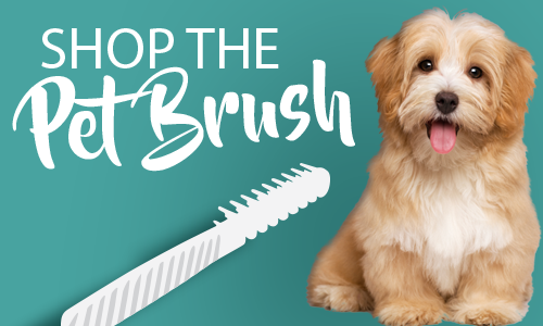 Get a Pennello Pet Brush today!